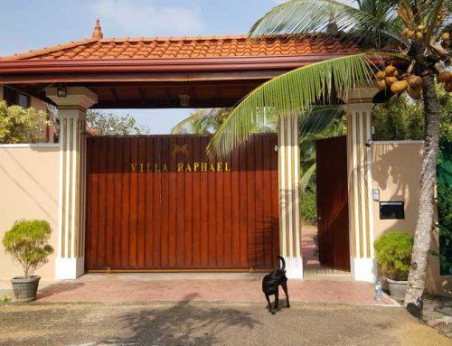 Haupteingang – Zufahrt