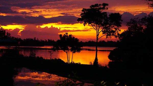 Klarer rot oranger Sonnenuntergang am Natursse von Bentota