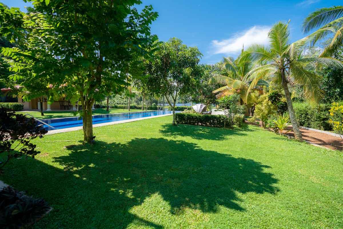 Garten, Gruenanlage mit Palmen und Pool